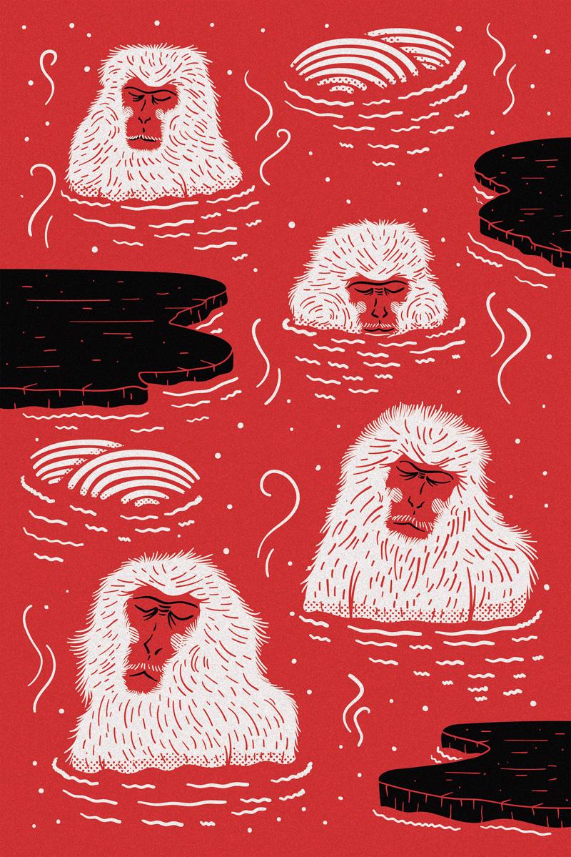원숭이 벽지