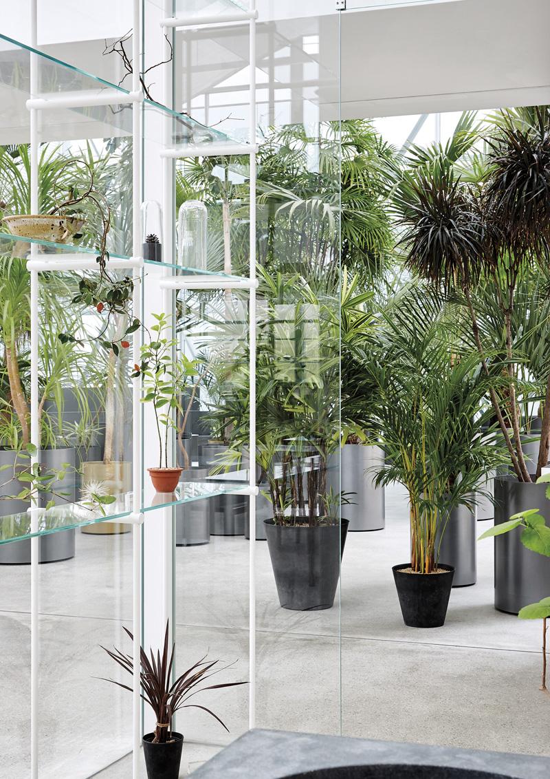 식물관PH