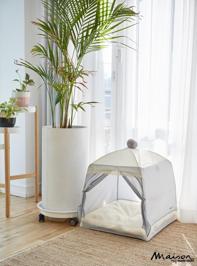반려동물, 개 고양이를 위한 텐트, 개집, 하우스 텐트